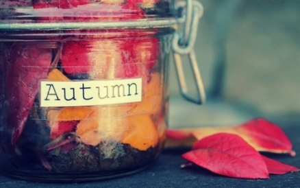 33888-autumn-leaf-jar